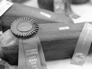 2011 Alaska State Fair Results | Local News Stories | frontiersman com