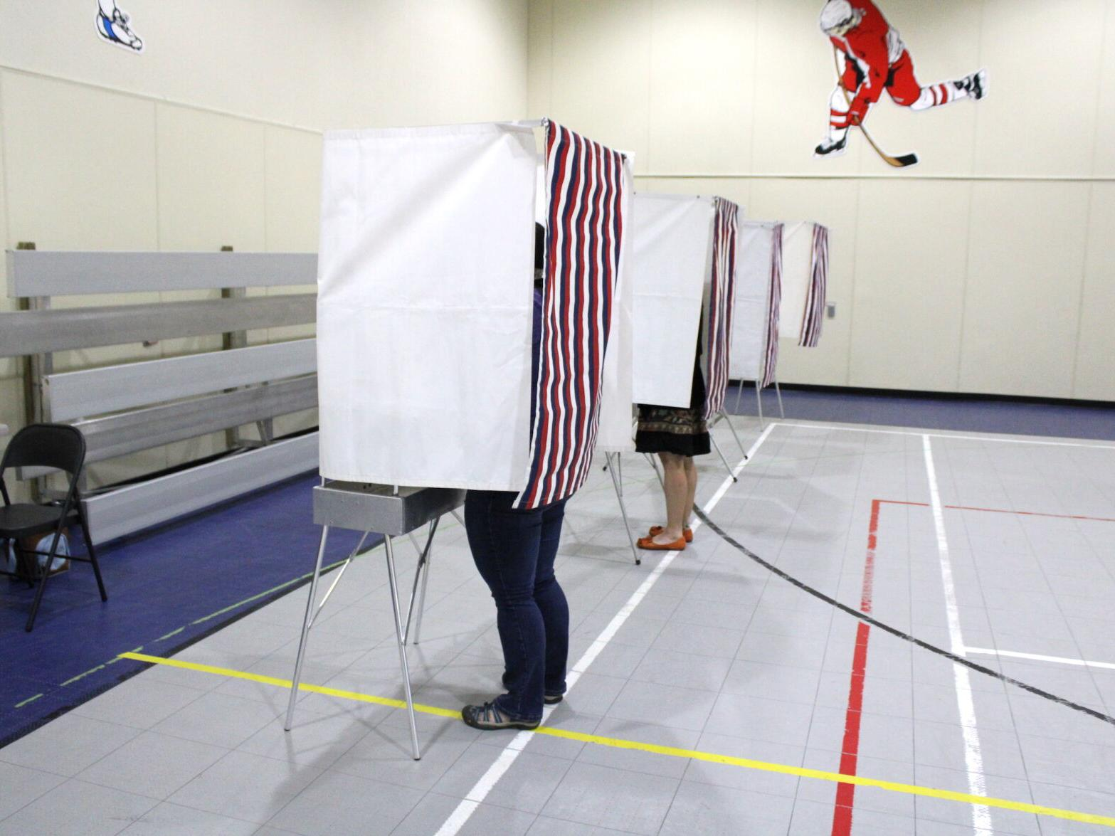 "Ballot Measure 2 on Nov. 3 ballot: It's called ""Election Reform"" but detractors say ""Election Confusion"""