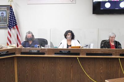 Palmer City Council