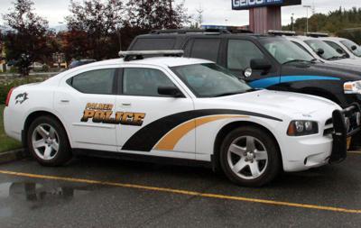 Palmer police car