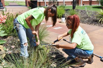 Sprucing up honor park