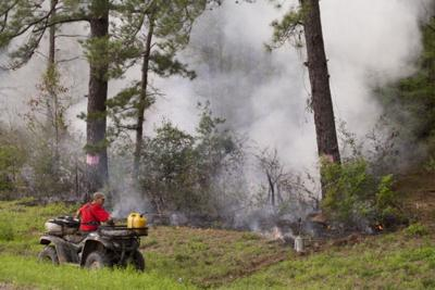 Controlled burns planned in Sam Houston National Forest