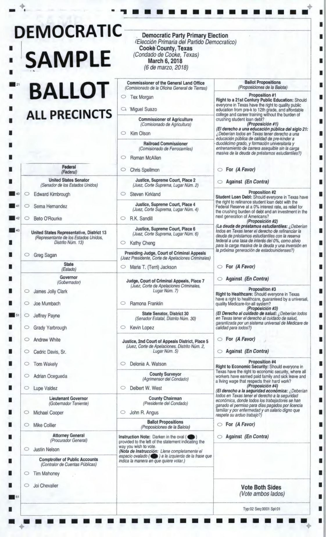 Democratic Party sample ballot for 2018 primary election