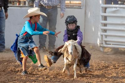 Gainesville rodeo wraps up