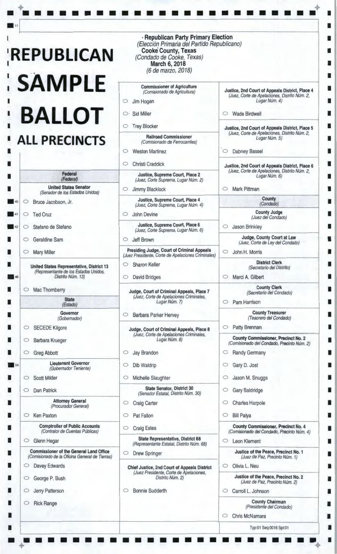 Democratic sample ballot for texas primary.
