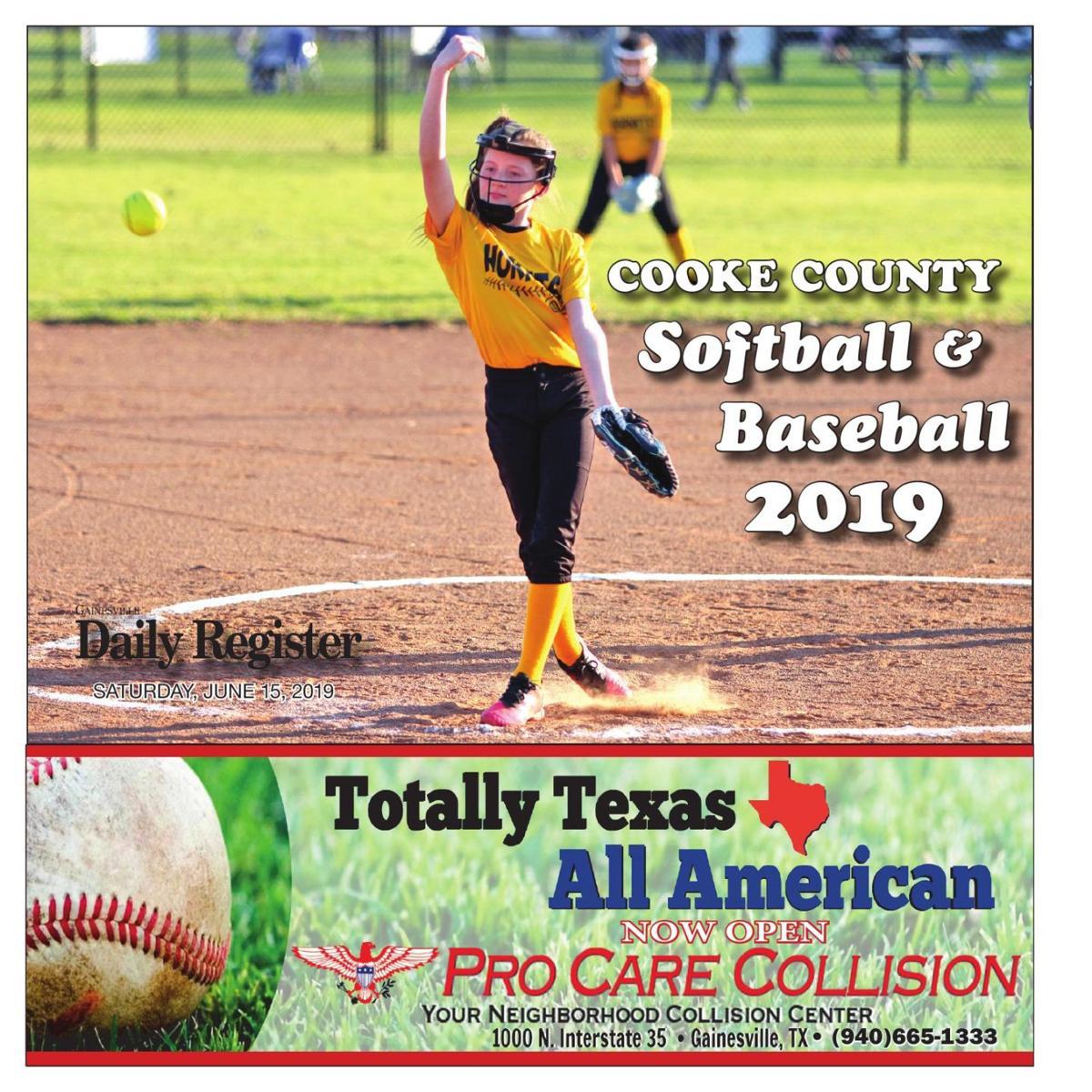 Softball/baseball 2019