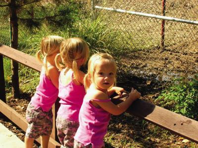Henkel volunteers clean up at zoo | Community
