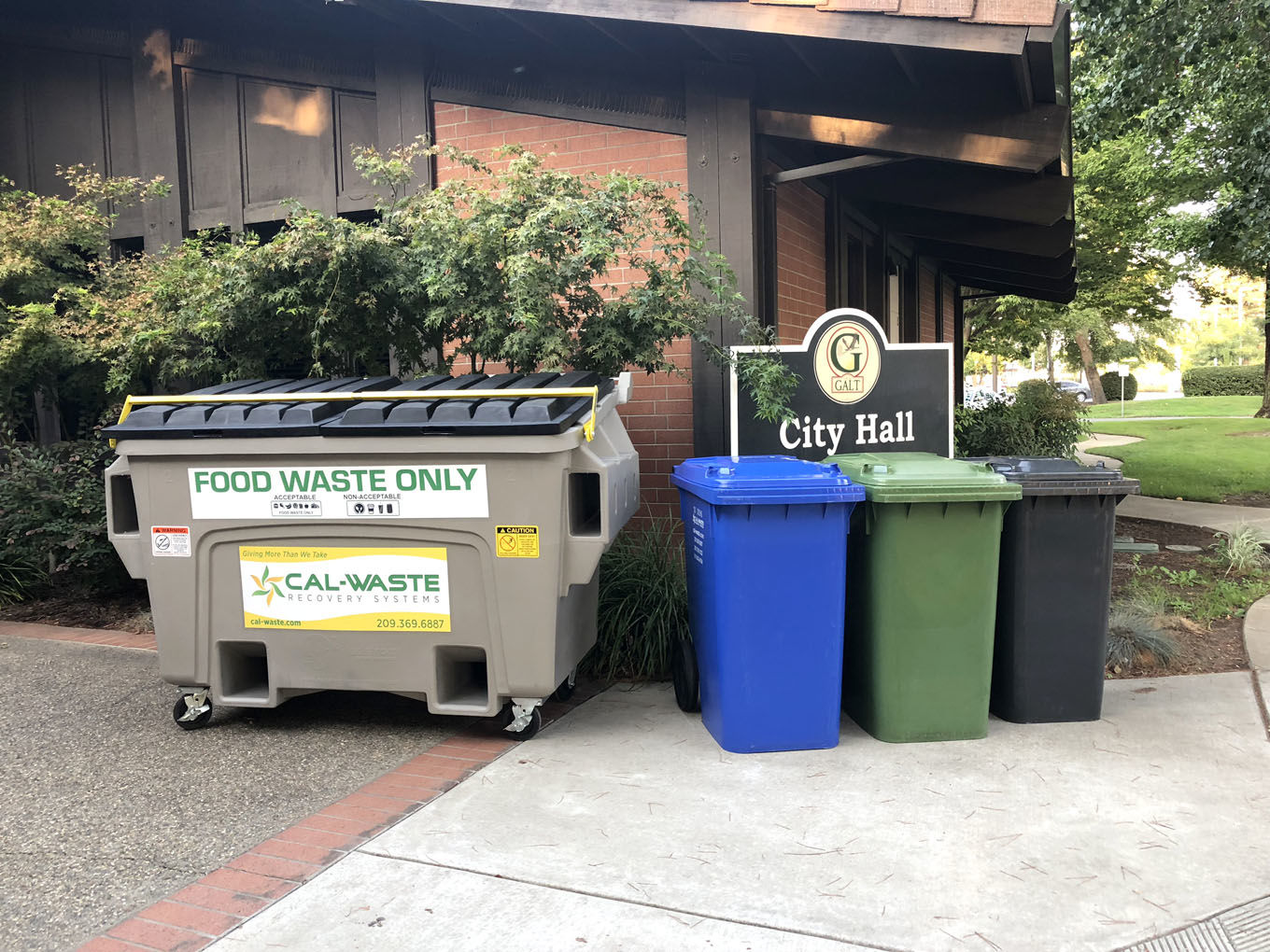 Council trash 3