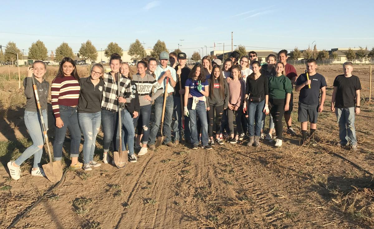 Liberty Ranch FFA students volunteer