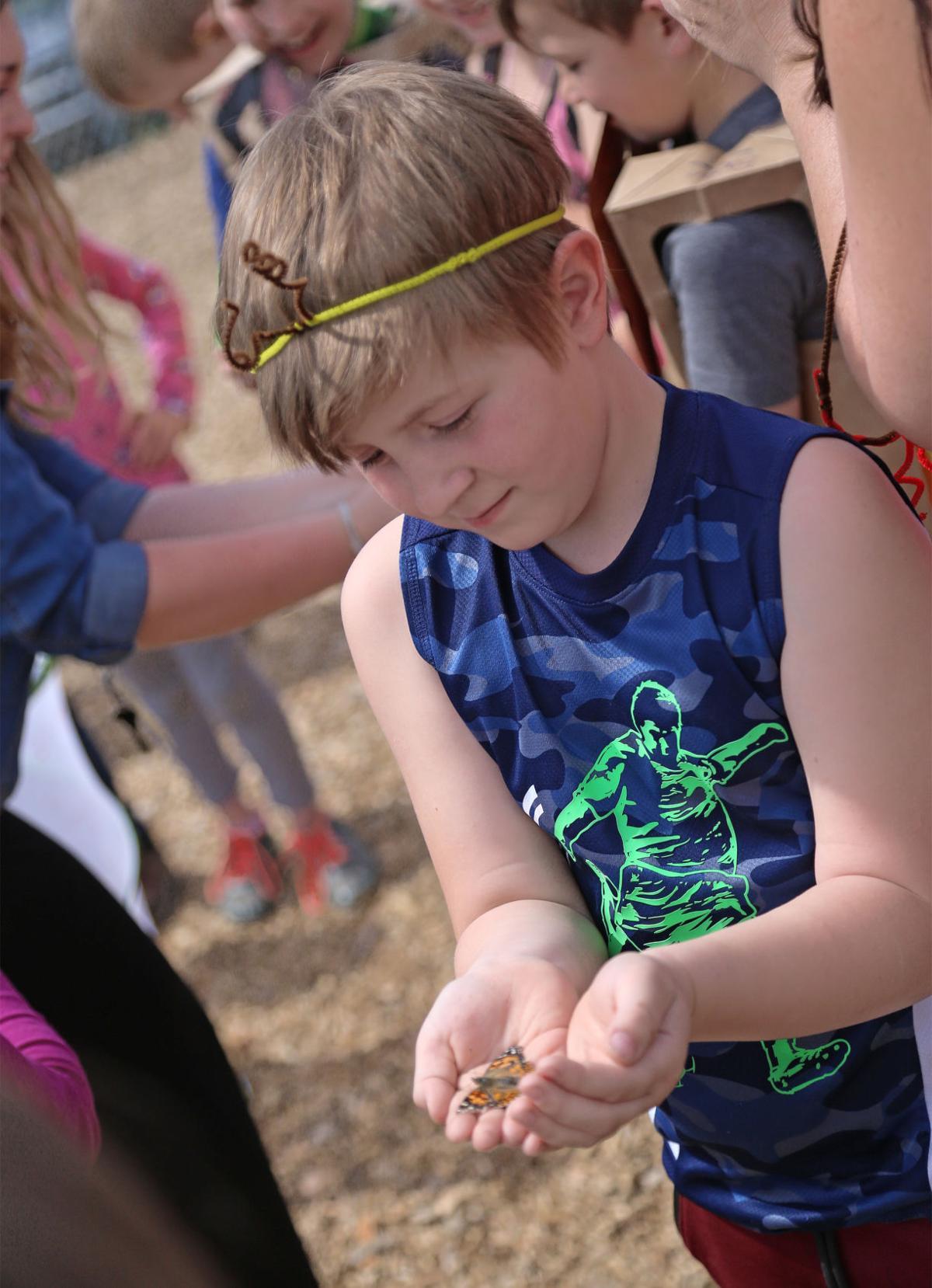 Heyburn Elementary Ugly Bug Ball