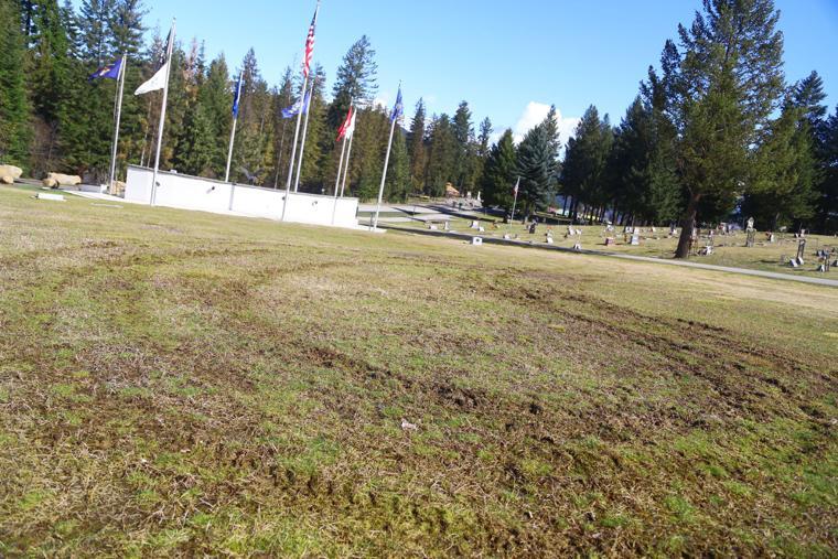 Motorist defaces cemetery lawn