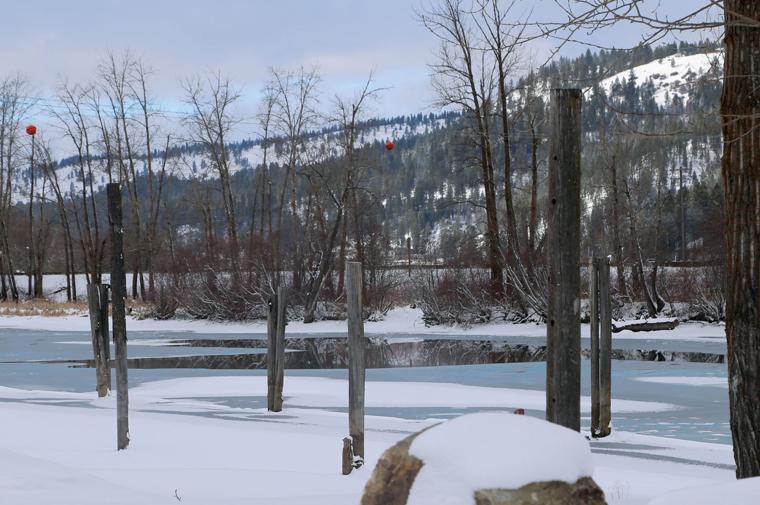 Late winter surge