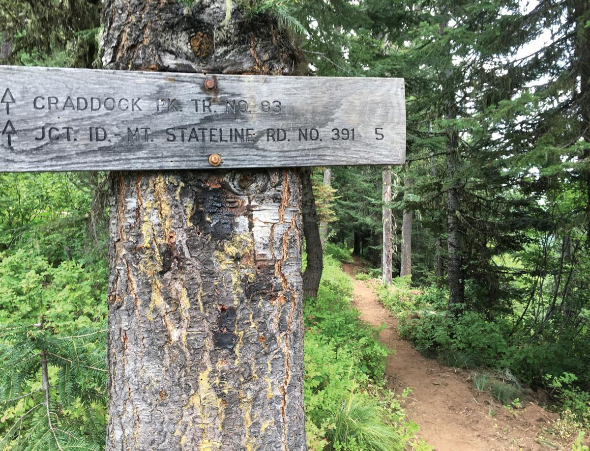 The nearby Great Outdoors: Craddock Peak Trail #83