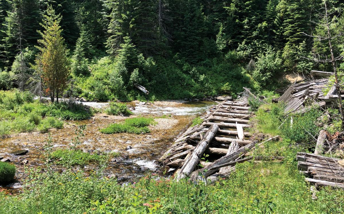 The nearby Great Outdoors: Gold Center-Marble Creek Trail #251