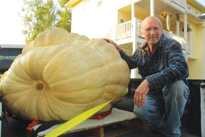 Hobby grows and grows - right into one massive pumpkin