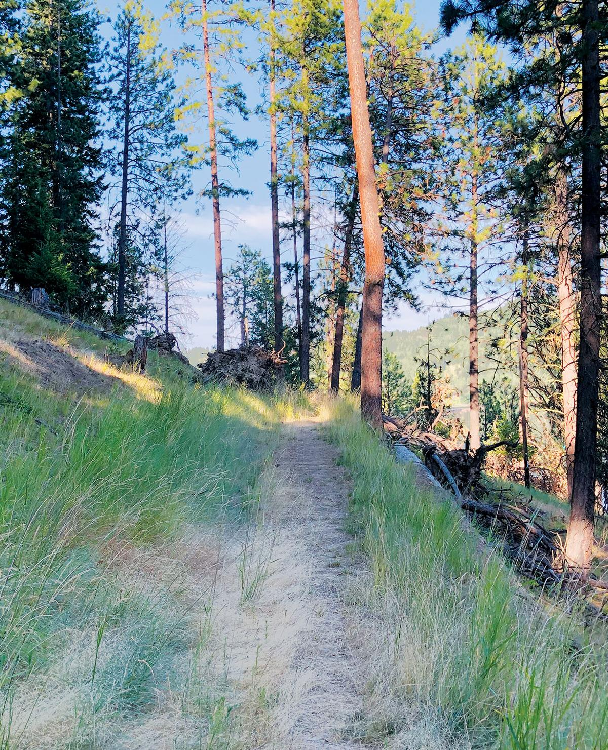 The nearby Great Outdoors: Hidden Lake Trail
