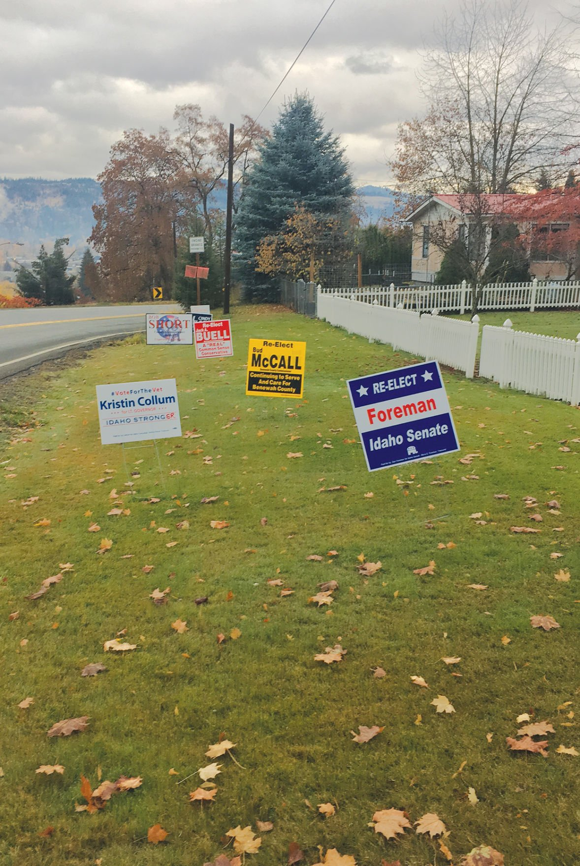Lots of choices at the polls Tuesday