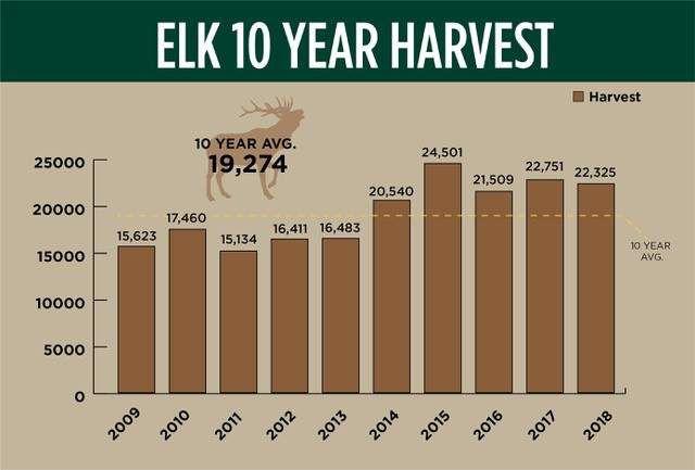 Elk and whitetail numbers strong; mule deer numbers dip