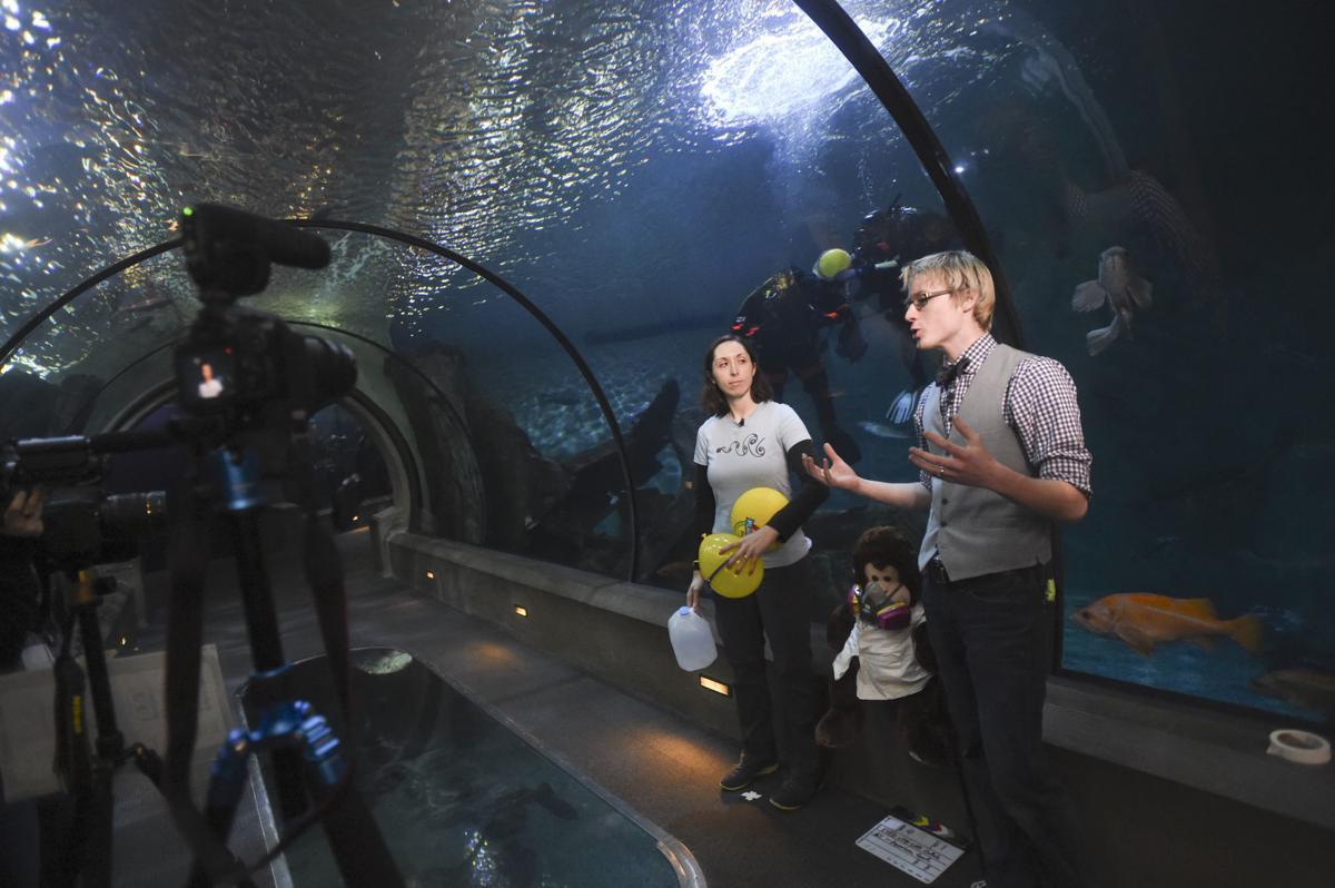 Lib Lab at the Oregon Coast Aquarium