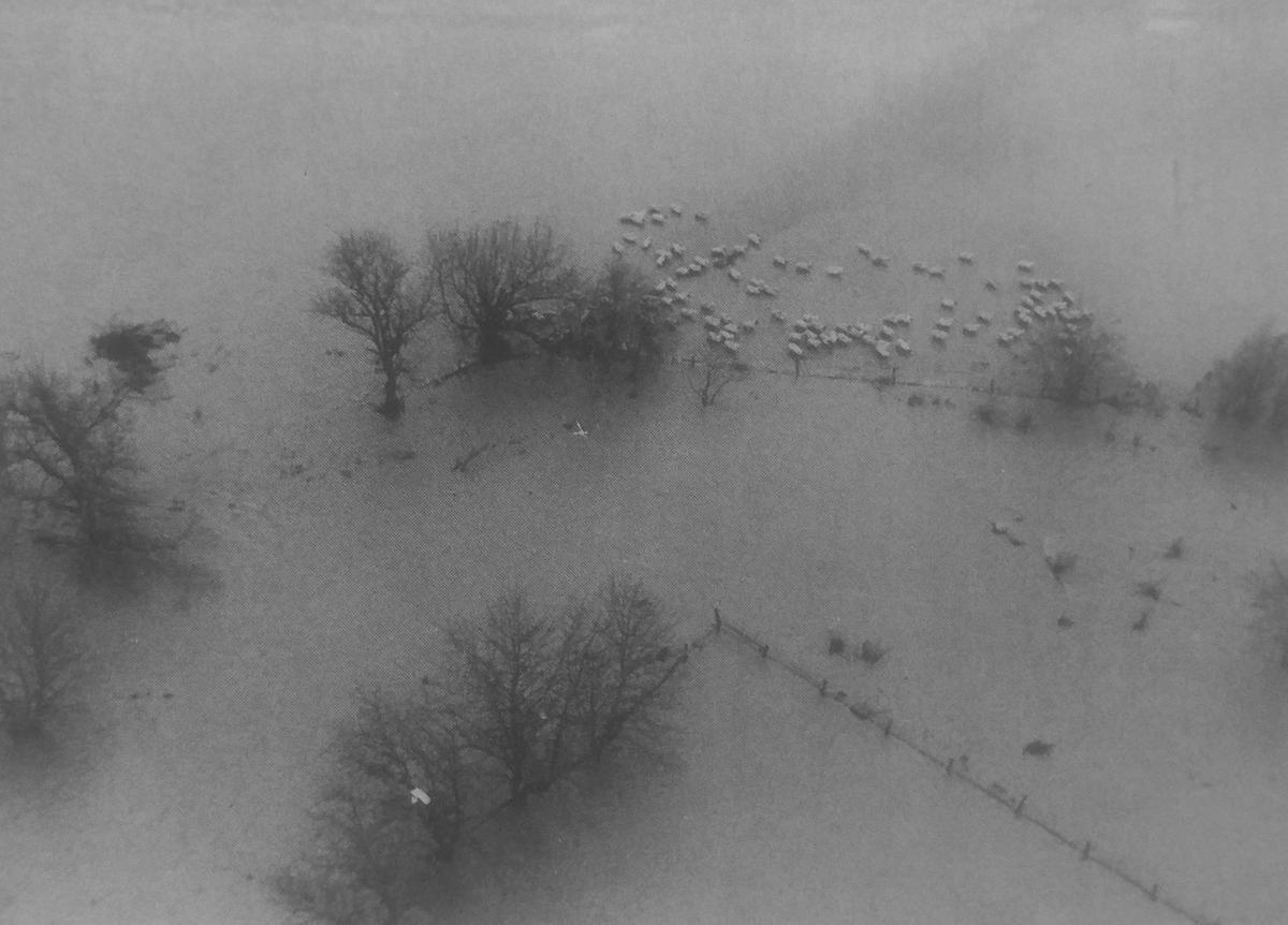 DH flood 21