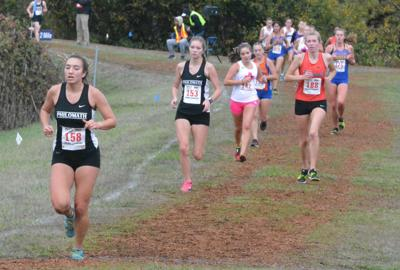 PHS cross-country: State 2018