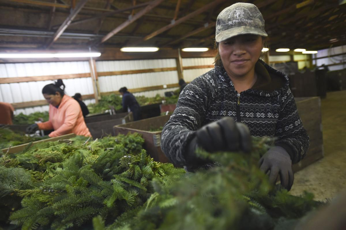 Holiday Tree Farms