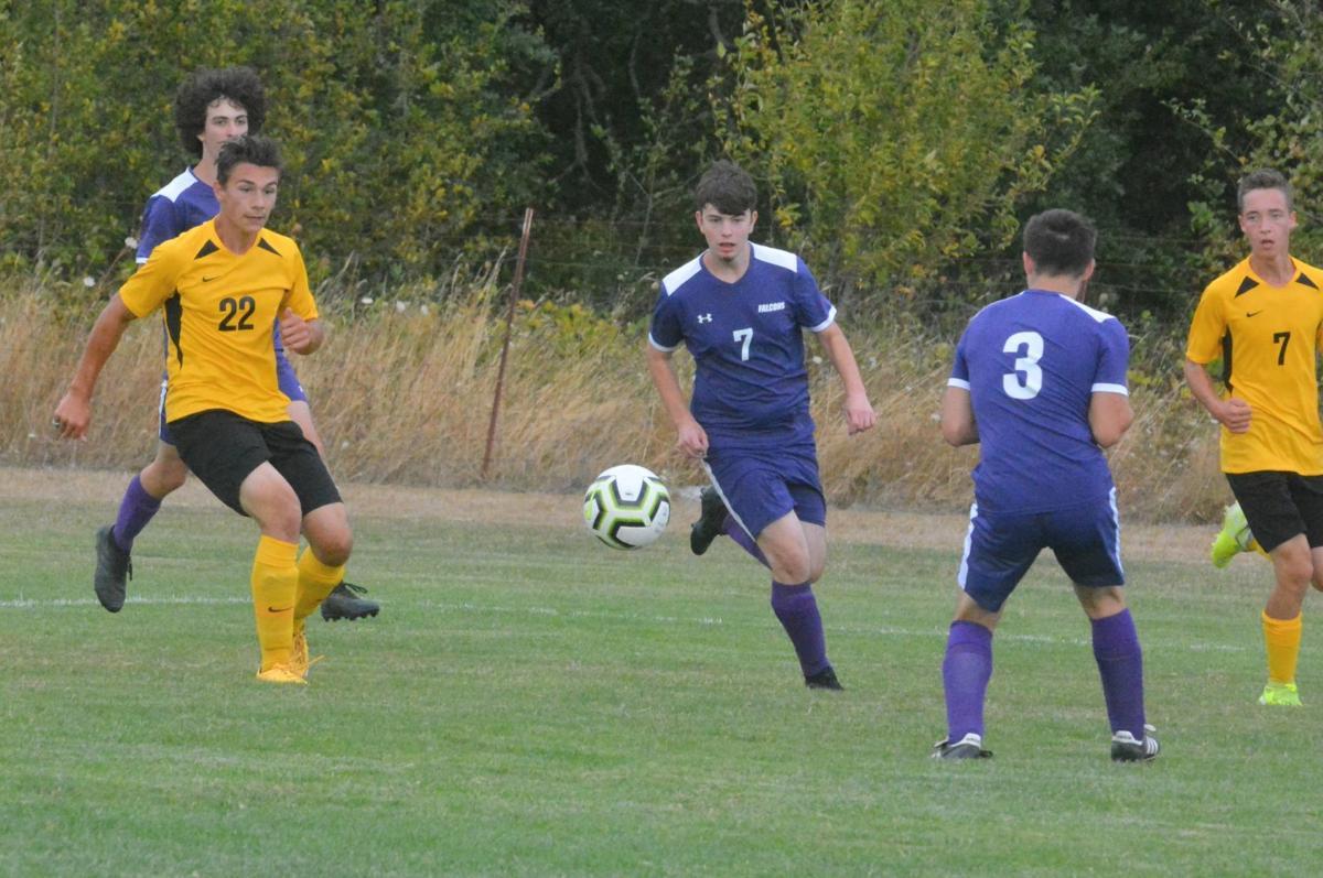 PHS boys soccer: Andrew Mecham