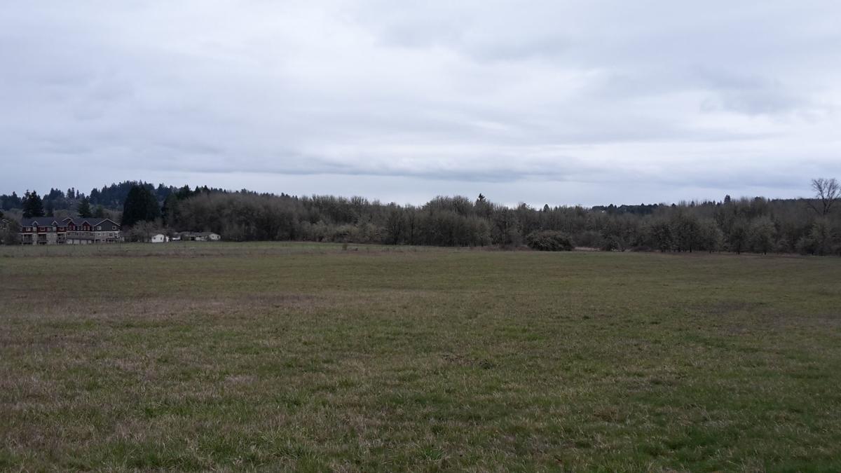 caldwell-farms-nws