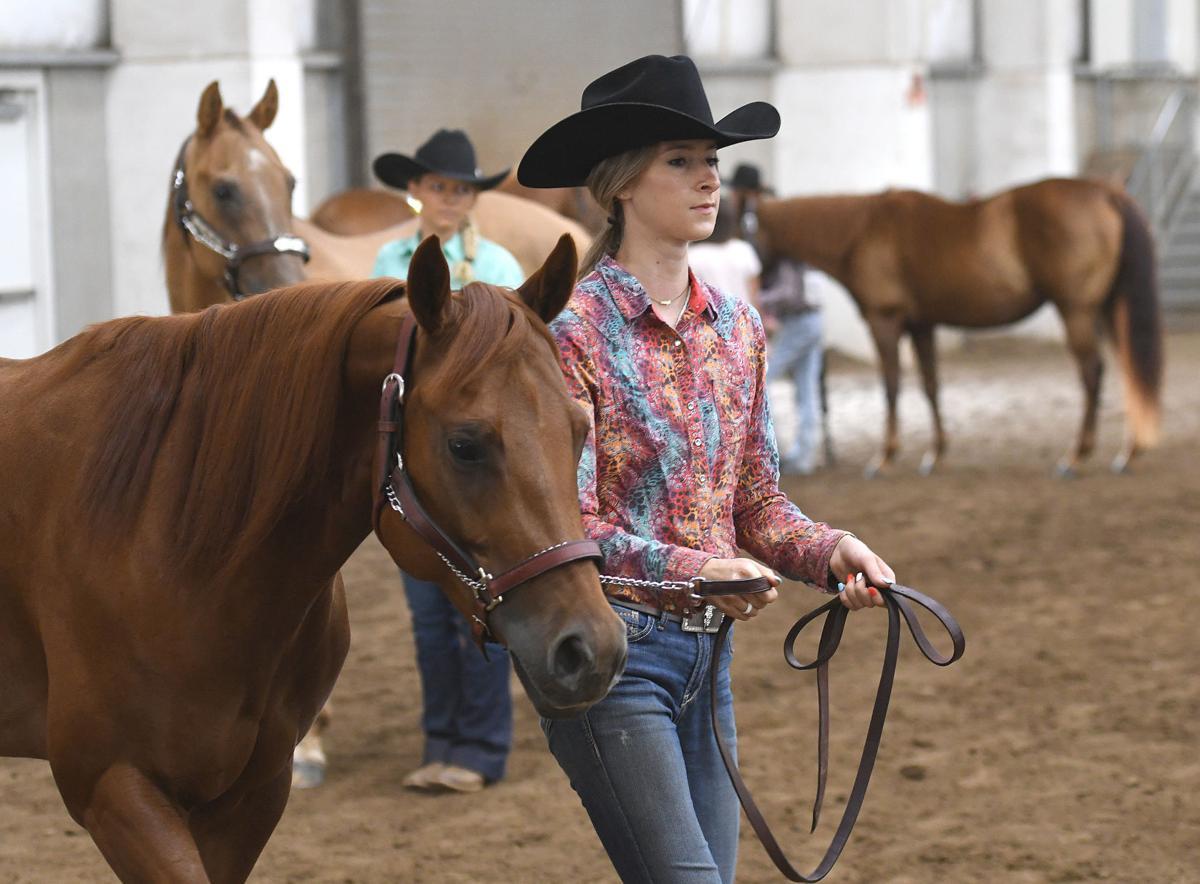 080421-adh-nws-Linn County Horse Fair02-my