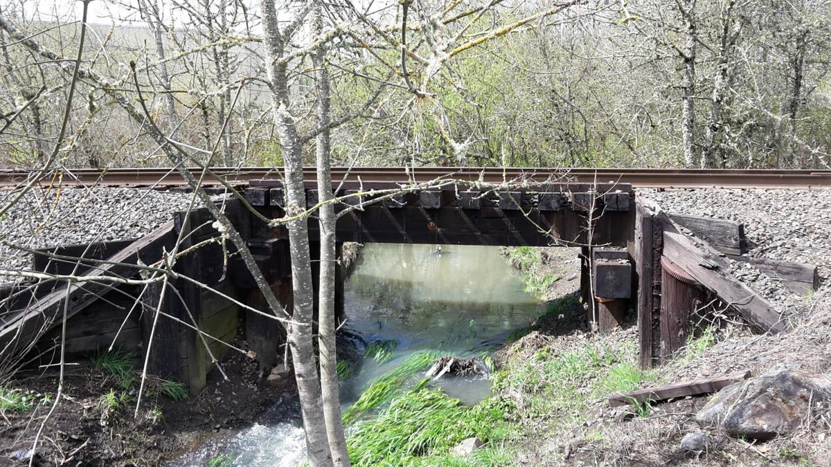 circle-walnut-tracks-creek