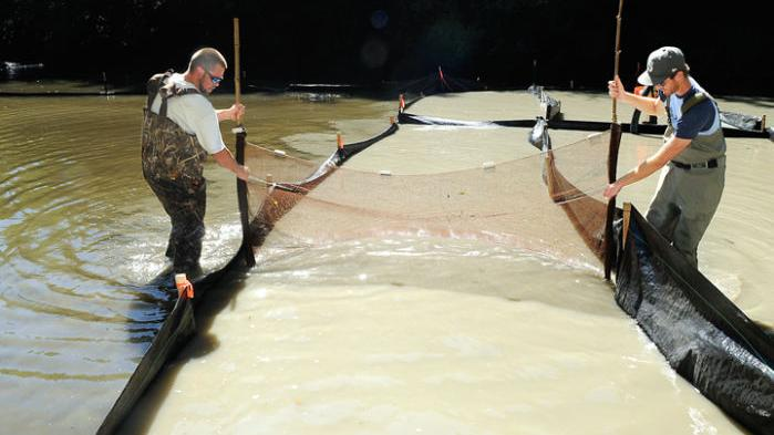 Bentonite removal gets underway   Local   gazettetimes com