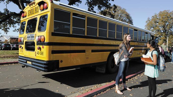 School bus chicks movies, free animal porn movies