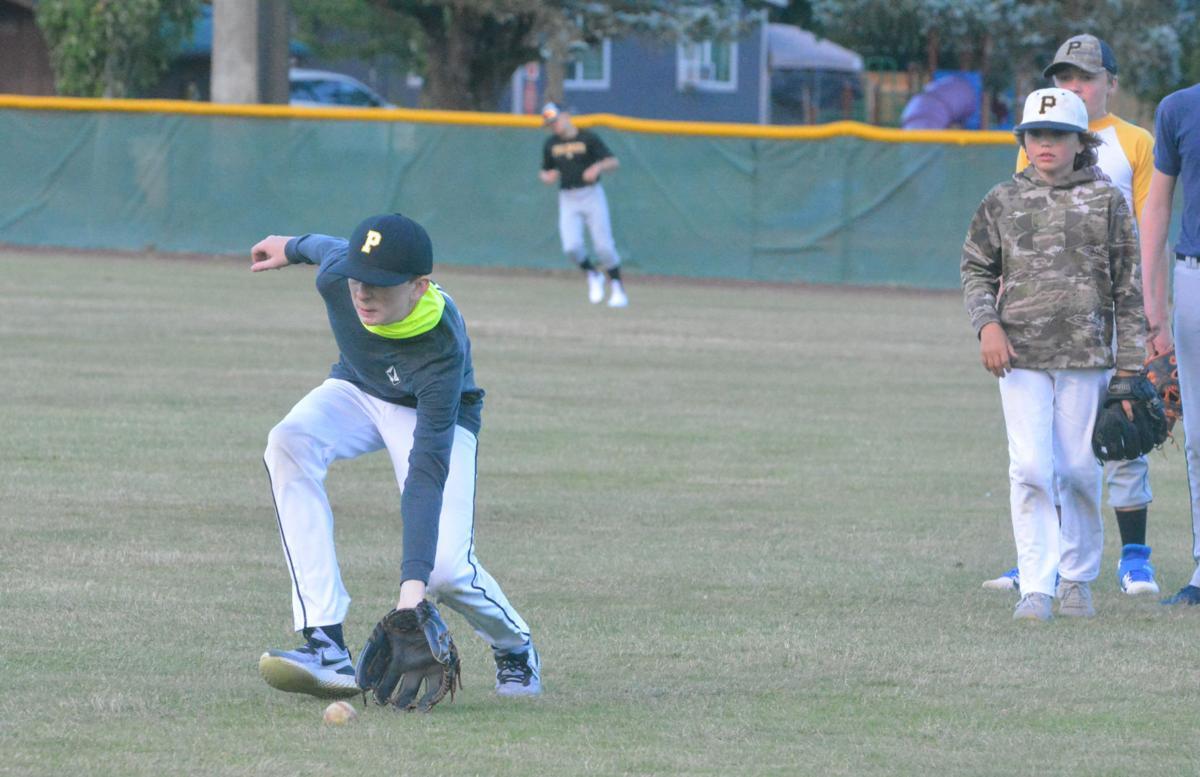 PHS baseball: Logan Matthews