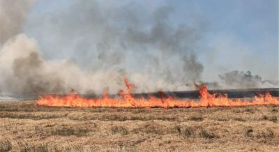 Field fire.jpg