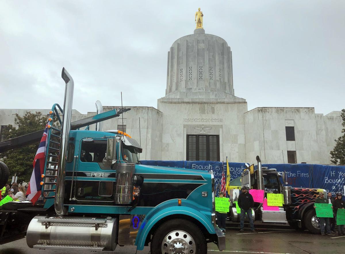 Capitol Rally (copy)