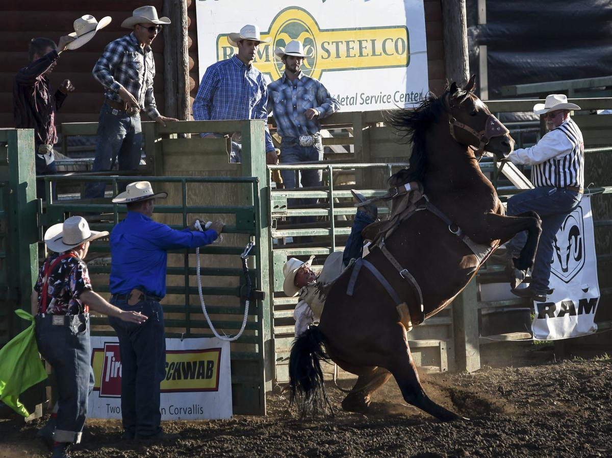 Gallery: Benton County Fair and Rodeo Day Two 02