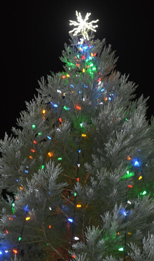 Philomath tree lighting 2018