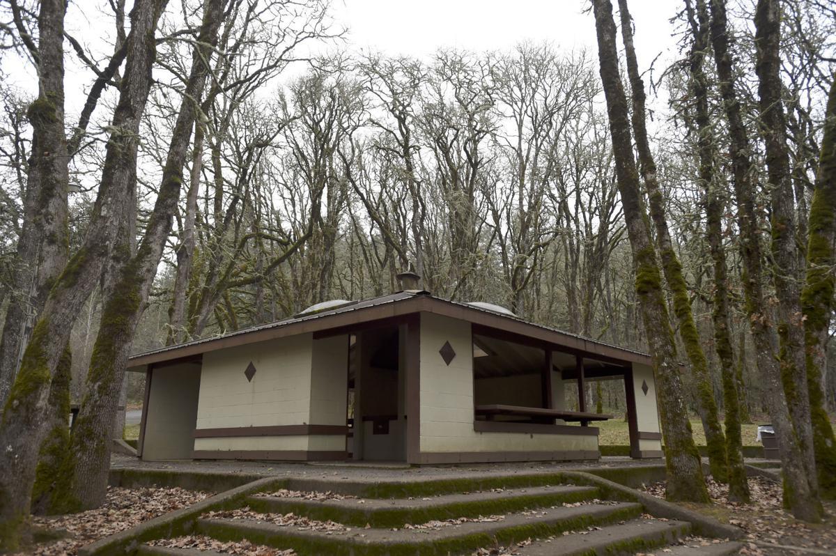 North Albany Park (copy) (copy)