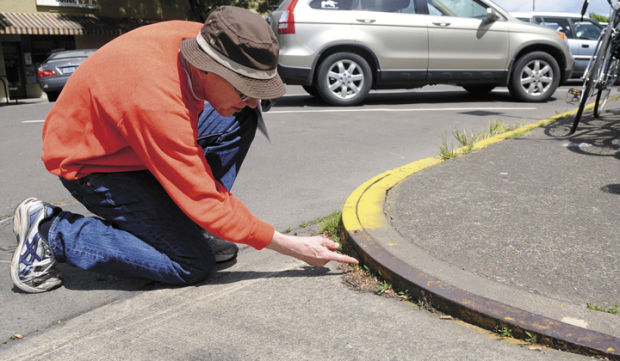 New tours of historic sidewalk markers offer insight into Corvallis history
