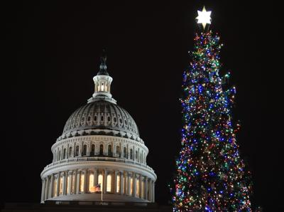 Capitol Christmas Tree18 (copy)