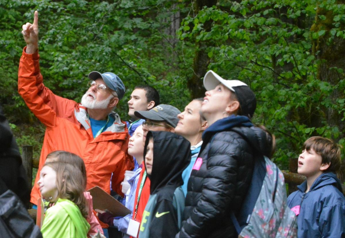 Beazell Forest field trip
