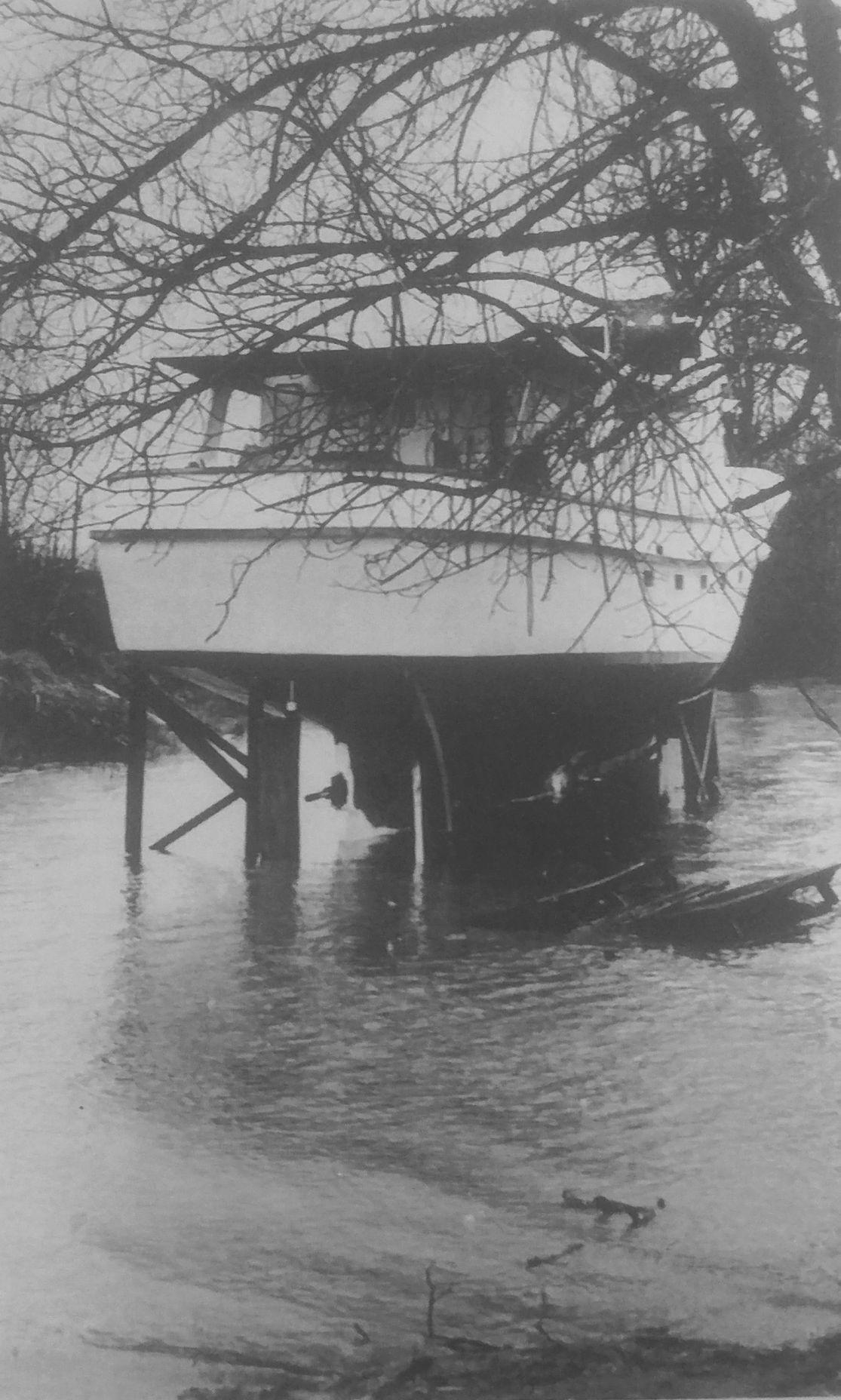 GT flood 10