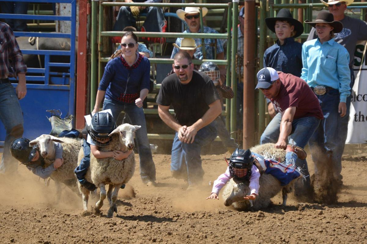 Youth Rodeo Finals Return Next Week To Philomath Arena