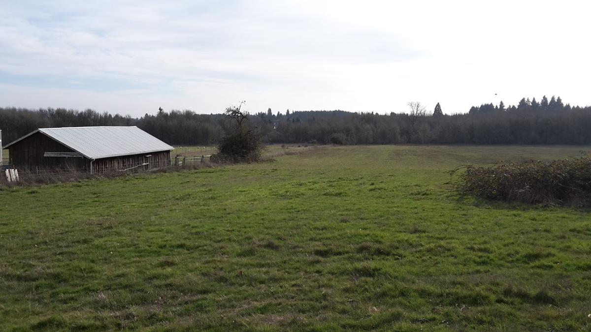 caldwell-farms-22