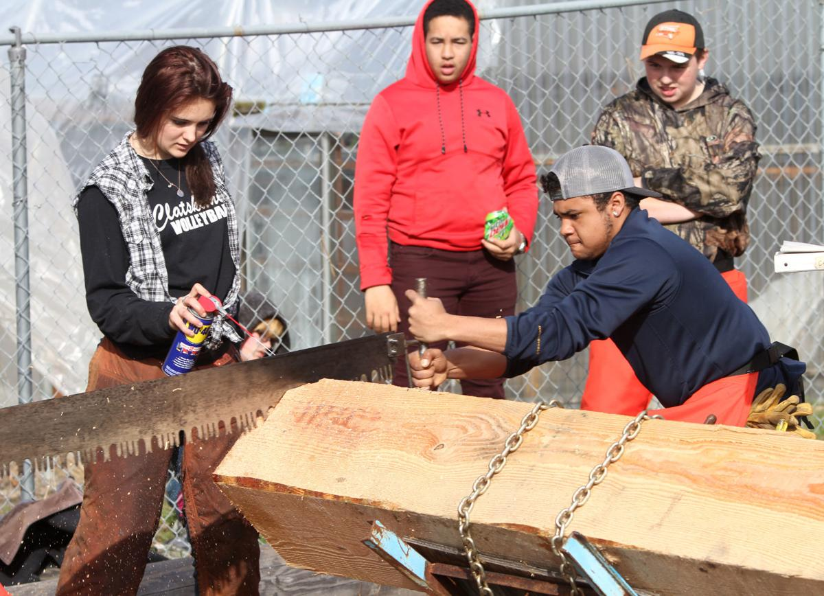 Forestry Skills Expo