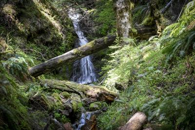 Wusi'n Creek