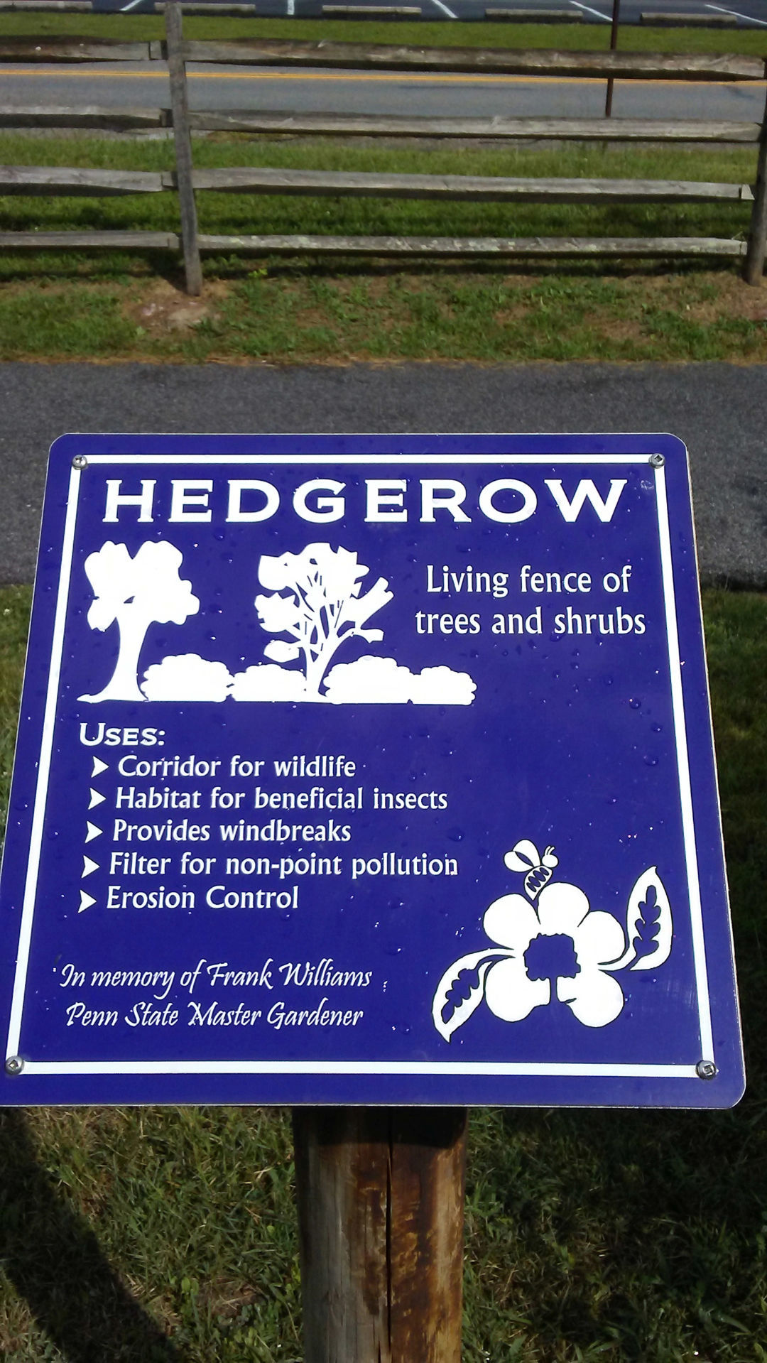 2019-07-26-hedgerow sign.jpg