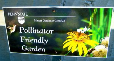 Friends of Pollenators