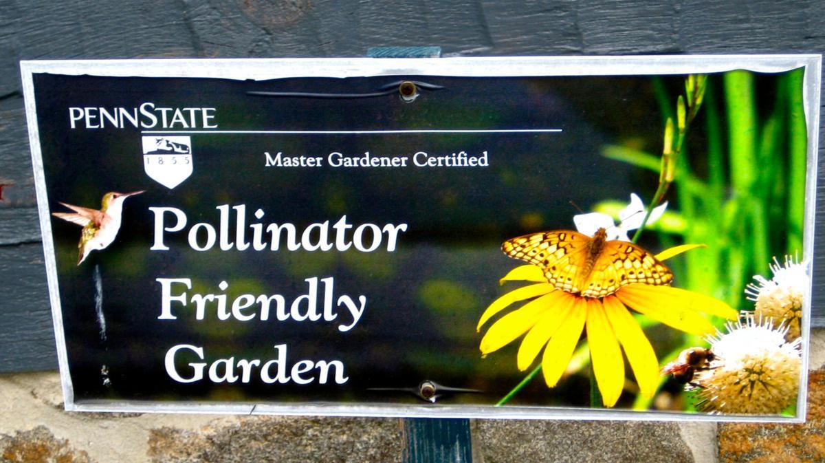 2019-07-26-GGC-pollinator garden.jpg
