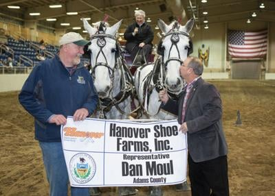 Moul races to first in draft horse contest